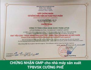 Chứng nhận GMP của nhà máy sản xuất Cường Phế